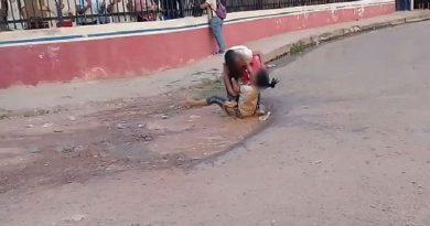 Em Altamira vídeo mostra alunas trocando socos, chutes e rolando na lama em briga